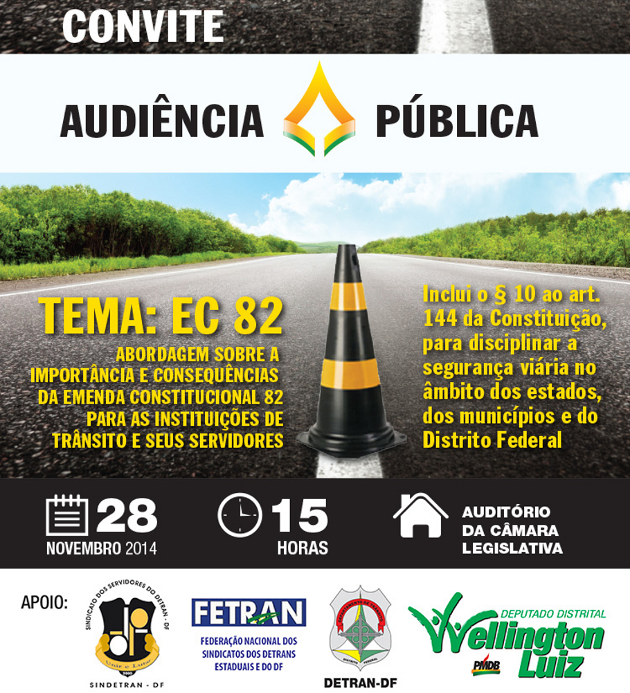 2014 11 28 DF-audiencia-publica